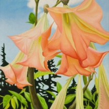 Angel Trumpets | Acrylic on canvas | 2013
