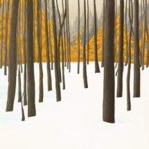 Compound Trail | Acrylic on canvas | 2012