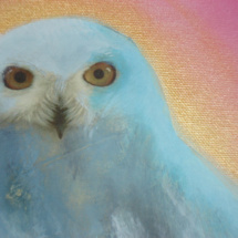 White Owl | Acrylic on canvas | 2010